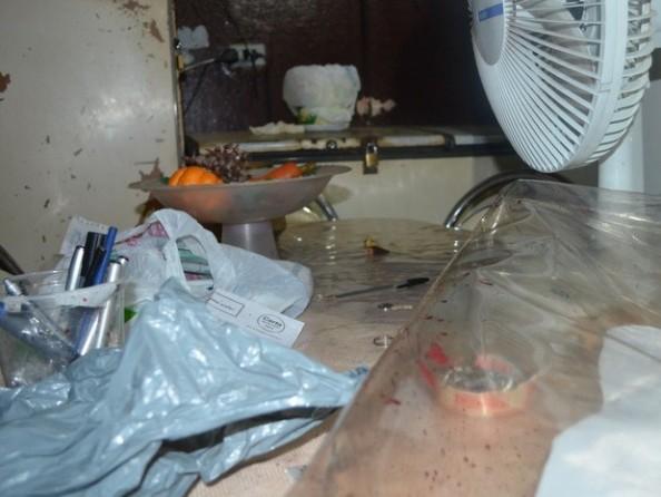 A travesti Abelha foi morta dentro da pensão que gerenciava em Piracicaba (Foto: Thomaz Fernandes/G1)