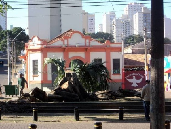 Fonte da Imagem: http://g1.globo.com/sp/piracicaba-regiao/noticia/2014/06/prefeitura-corta-arvore-do-largo-dos-pescadores-e-moradores-lamentam.html